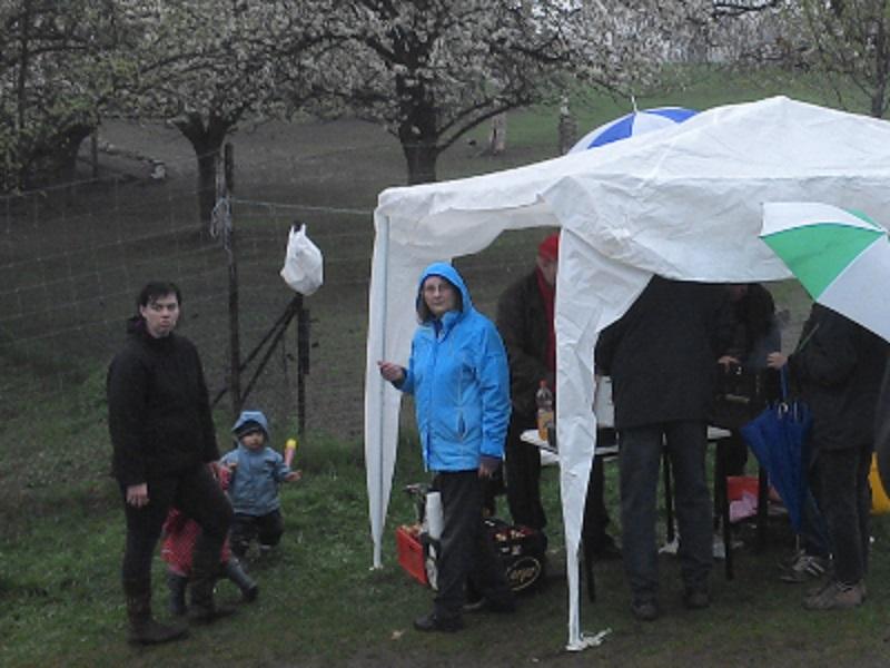 schlechtes Wetter zum Maibaumsetzen, gegrillt wird unterm Zelt